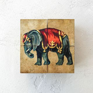 """Cubes with pictures of """"Circus Animals"""" (4 dice in a wooden box)"""