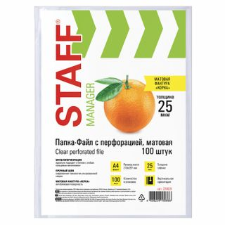 Folder files perforated ECONOMY, A4, STAFF, kit of 100 pieces, orange peel, 25 µm