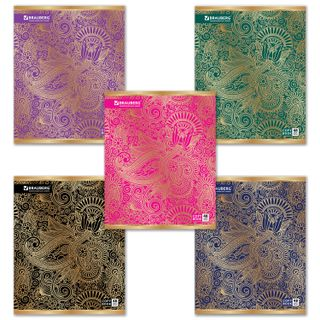 Notebook A5, 48 sheets, BRAUBERG, cage, foil embossment, SGATION