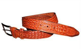 Belt with a snake