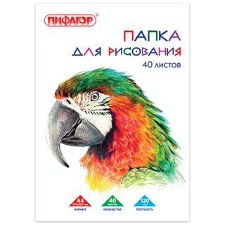Drawing folder, A4, 40 sheets, 120 g/m2, PIFAGOR, 210 x297 mm,