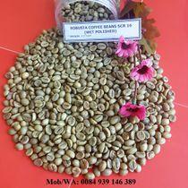 WASH POLISHED ROBUSTA COFFEE BEANS SCR 16
