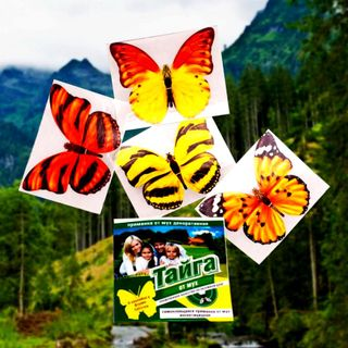 Taiga lure from flies decorative 4 stickers in the package