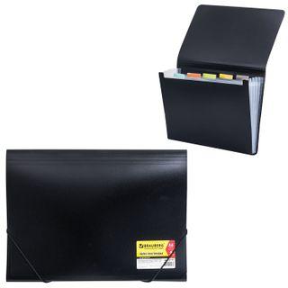 Folder on elastics BRAUBERG