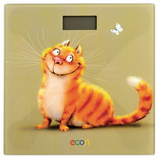 ECON / Floor scales ECO-BS002, electronic, weight up to 150 kg, square, glass, with a picture
