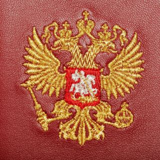 "Passport cover ""eagle"" red color with Golden embroidery"