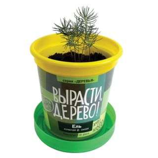 Kit for growing plants to GROW a TREE!