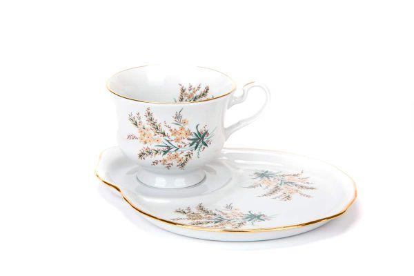 Dulevo porcelain / Gift set 2 pcs. Spring Nina