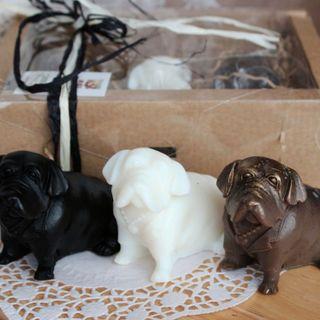 Bulldog Soap Gift Set