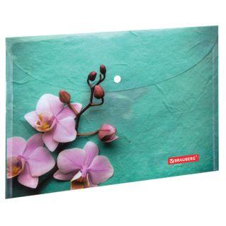 Folder-envelope with button BRAUBERG