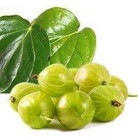 Gooseberries fresh