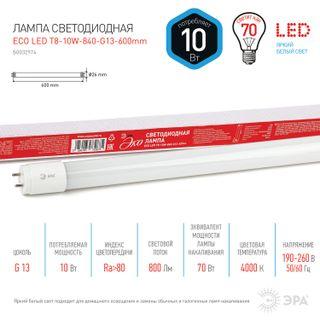 ERA / LED tube lamp Eco, 10 W, 25000 h, 600 mm, neutral white, ECO LED T8-10W-840-G13-600mm