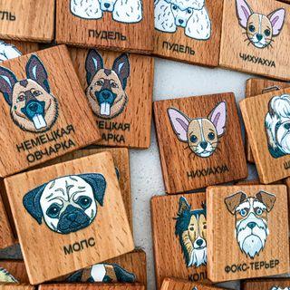 "Memori ""Dog"" in a cardboard box"
