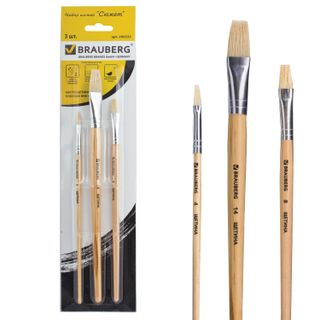 BRAUBERG brushes, set of 3 PCs (bristle flat No. 4, 8, 14), blister