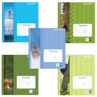 Notebook 18 L. BRAUBERG, cage, cover the cardboard, PATHFINDERS