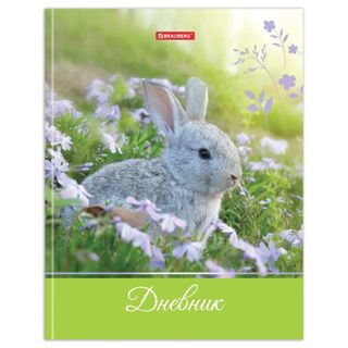 Diary 5-11 class, 48 sheets, solid, BRAUBERG, glossy lamination, with a hint,