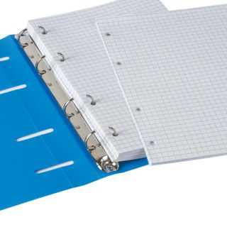 Notebook on A5 rings (160 x215 mm), 120 sheets, plastic cover, cage, BRAUBERG,