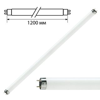 OSRAM / Fluorescent lamp PHILIPS TL-D 36W / 33-640, 36 W, cap G13, in the form of a tube 120 cm