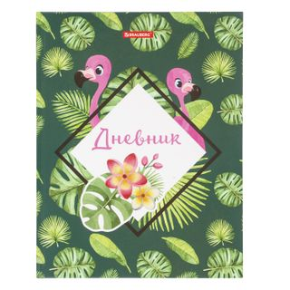 Diary 1-4 class 48 sheets, solid, BRAUBERG, glossy lamination, with a hint,