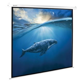 Screen projection wall (180х180 cm), matted, electric drive, 1:1, BRAUBERG