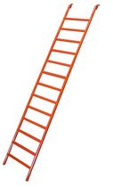 Additional ladder for the Sports Complex