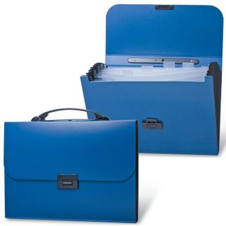 Portfolio plastic BRAUBERG Energy A4 (330х256х32 mm), 7 offices, index labels, blue