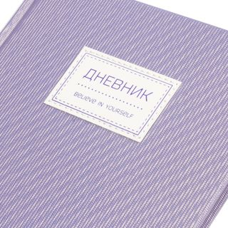 Diary 1-11 class 48 sheets, cover leather solid, stripe, BRAUBERG BRILLIANT, platinum