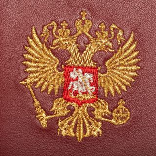 "Passport cover ""Eagle"""