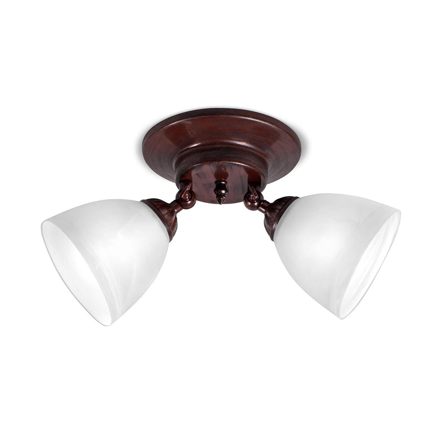PETRASVET / Ceiling chandelier S2197-2, 2xE27 max. 60W