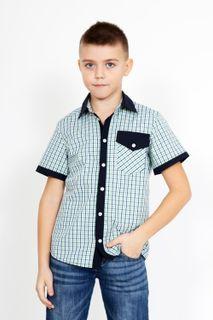 Shirt Bob 3 Art. 3085