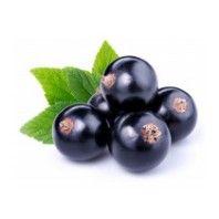 Black currants fresh