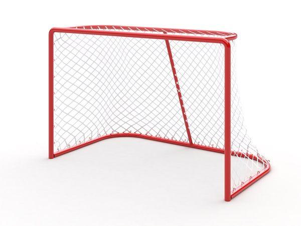 Hockey gates D414 powder paint