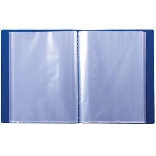 Folder 100 liners BRAUBERG standard, blue, 0.9 mm
