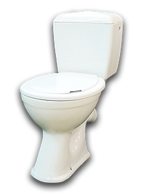 The toilet bowl is a funnel-shaped bowl with an oblique outlet and a one-piece shelf