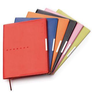 Diary 1-11 class, leather (light), embossment, lysse, 48 sheets, ALT, METROPOL Orange