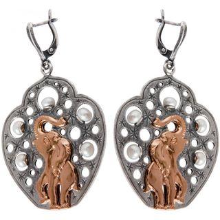 Earrings 30137