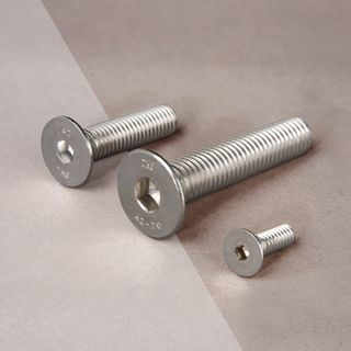 Stainless Steel Flat Allen Bolt