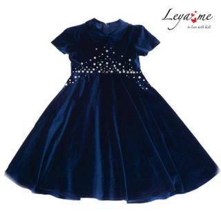 Blue velvet dress embroidered with pearls