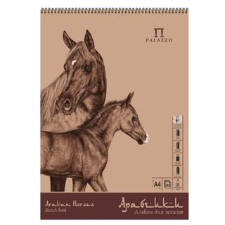 PALAZZO / Album-sketchbook