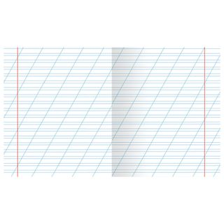 Notebook GREEN cover, 12 sheets HATBER, offset, oblique line, with the fields