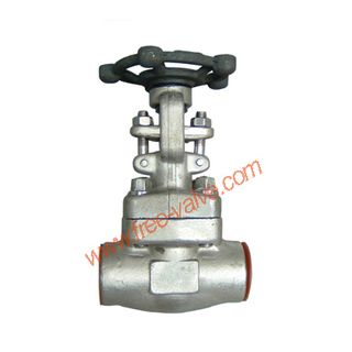 SW Ends Forged Steel Globe Valve,SW Ends stainless steel Forged Steel Globe Valve