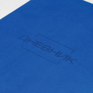 Diary 1-11 class 48 sheets, cover leather (light), thermosing, BRAUBERG LATTE, blue