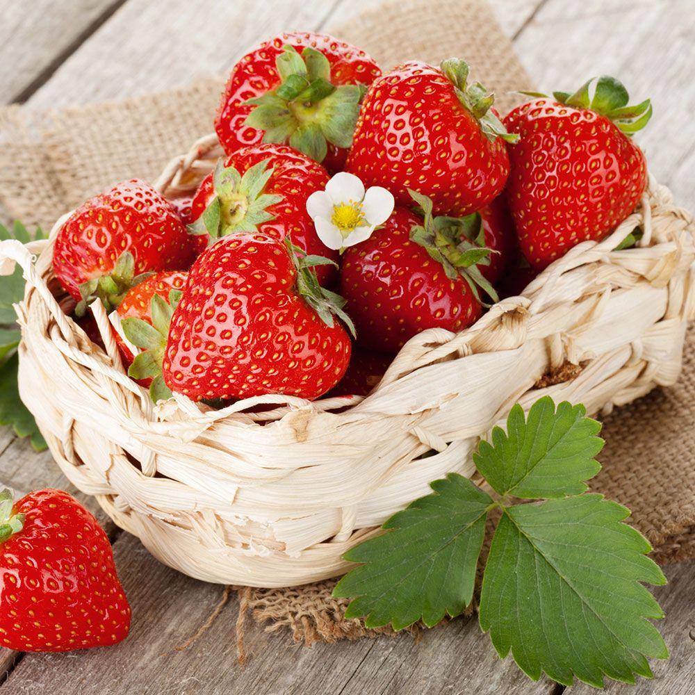 "Fresh strawberries ""Shuisky berries"""