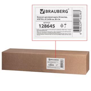 Notepad for flipchart BRAUBERG, 20 sheets, cell, 67,5х98 cm, 80 g/m2