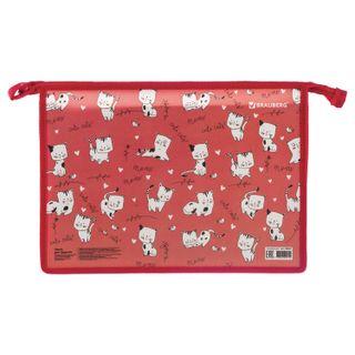 Folder for work BRAUBERG, A4, 2 compartments, zipper top, organizer,
