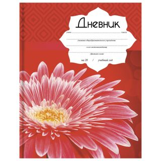 Diary for 5-11 classes, 48 sheets, solid, BRAUBERG, sequins, hints,