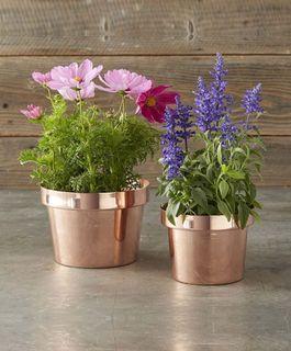 Flowerpots, metallic