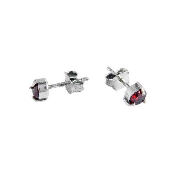 Earrings 30083