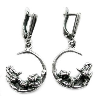 Earrings 30049