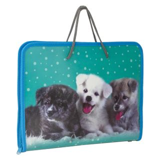 Folder for work with pens, A4, plastic, color printing, zipper around,